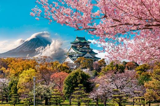 viaje-japon-osaka