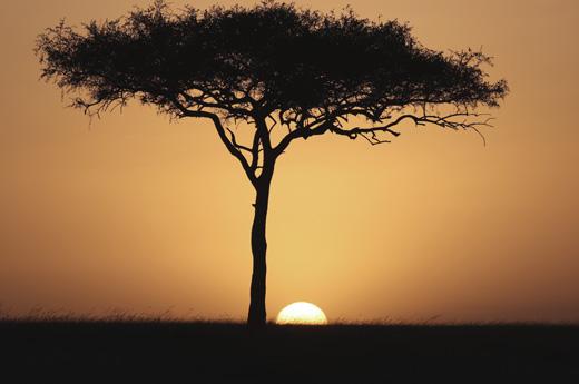 viaje-kenia-zanzibar-masai-mara-2