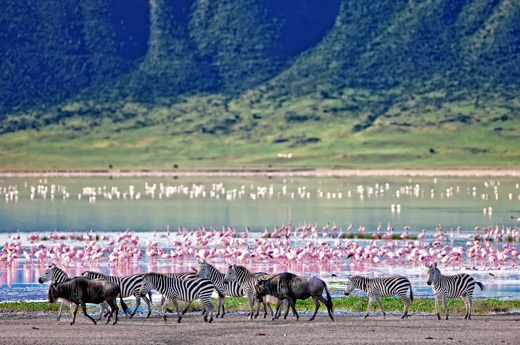 viaje-tanzania-zanzibar-ngorongoro-2