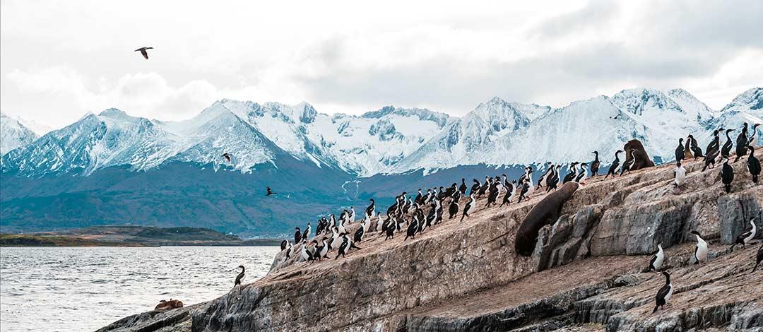 crucero-patagonia-cabecera