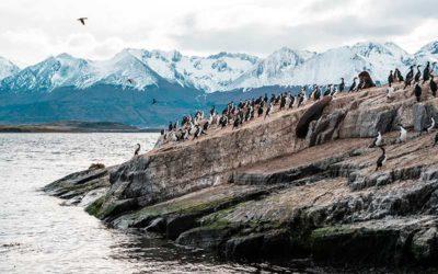 Crucero por Patagonia y Tierra de Fuego