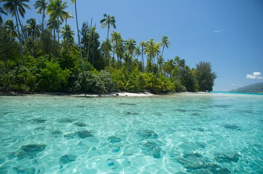 viaje-a-polinesia-francesa-moorea-1