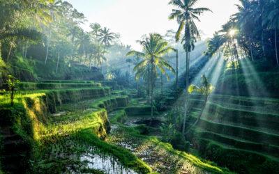 9 Lugares Más Increíbles de Indonesia