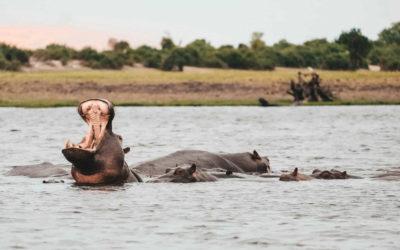 Viajar a Namibia en 2021